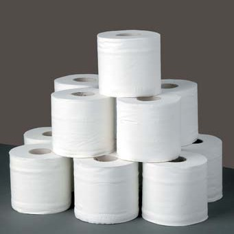toilet roll introductions speaking challenge
