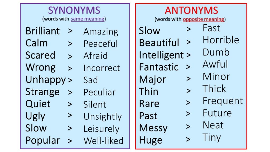 Synonym and Antonym Activity