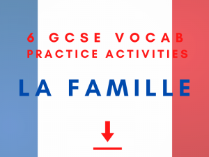French GCSE family Vocabulary Practice revision